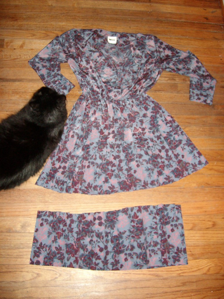cat messing with dress on floor