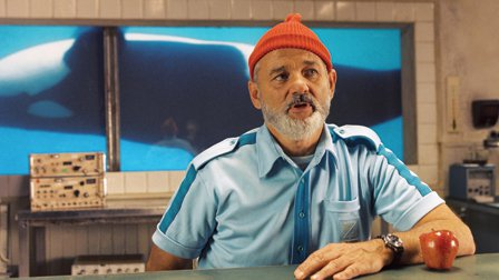 DIY Steve Zissou Costume from The Life Aquatic 6