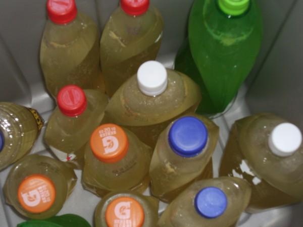 Bottles of Ginger Beer