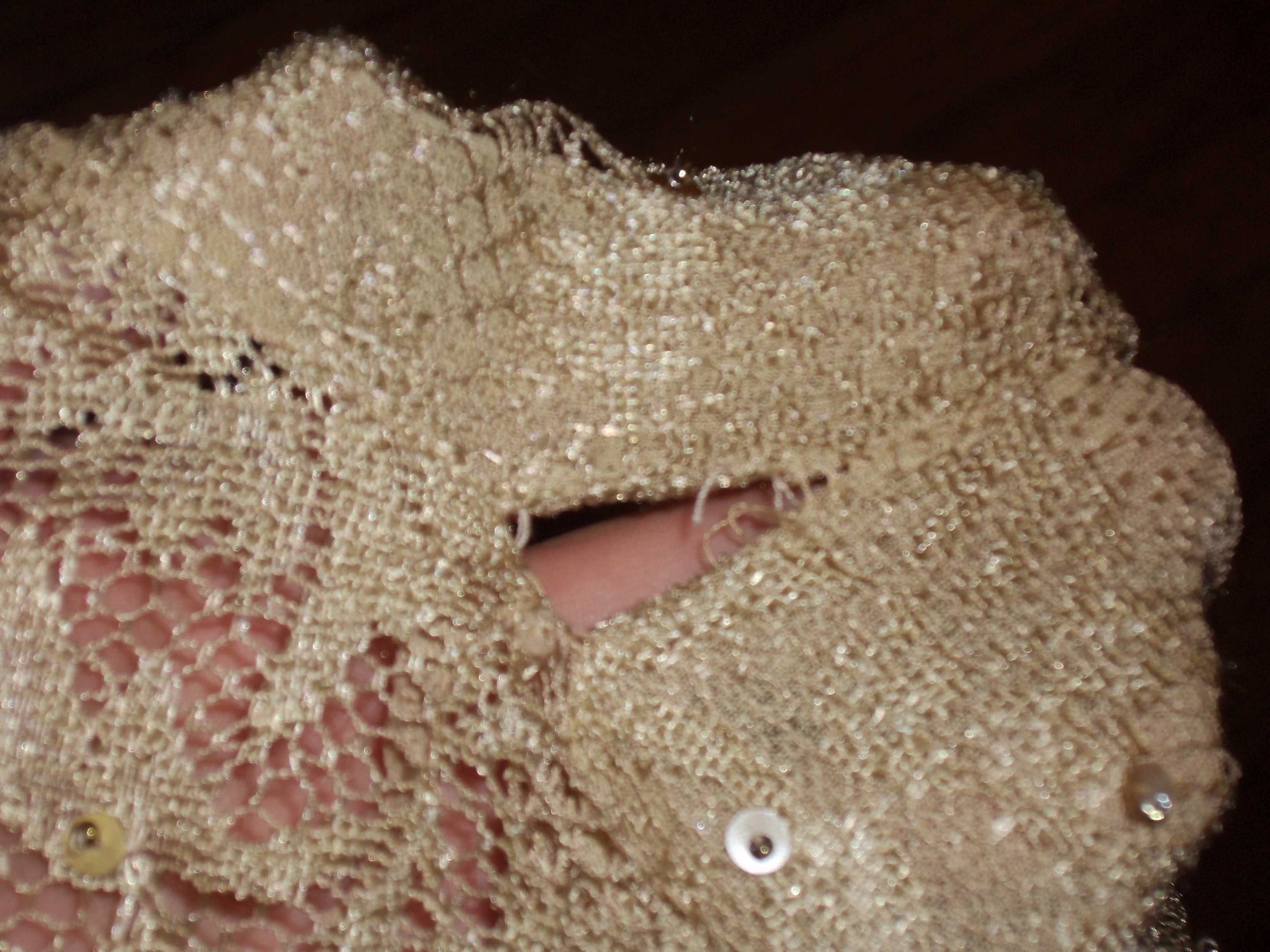 Day 93:  Sequins and Lace Top 3