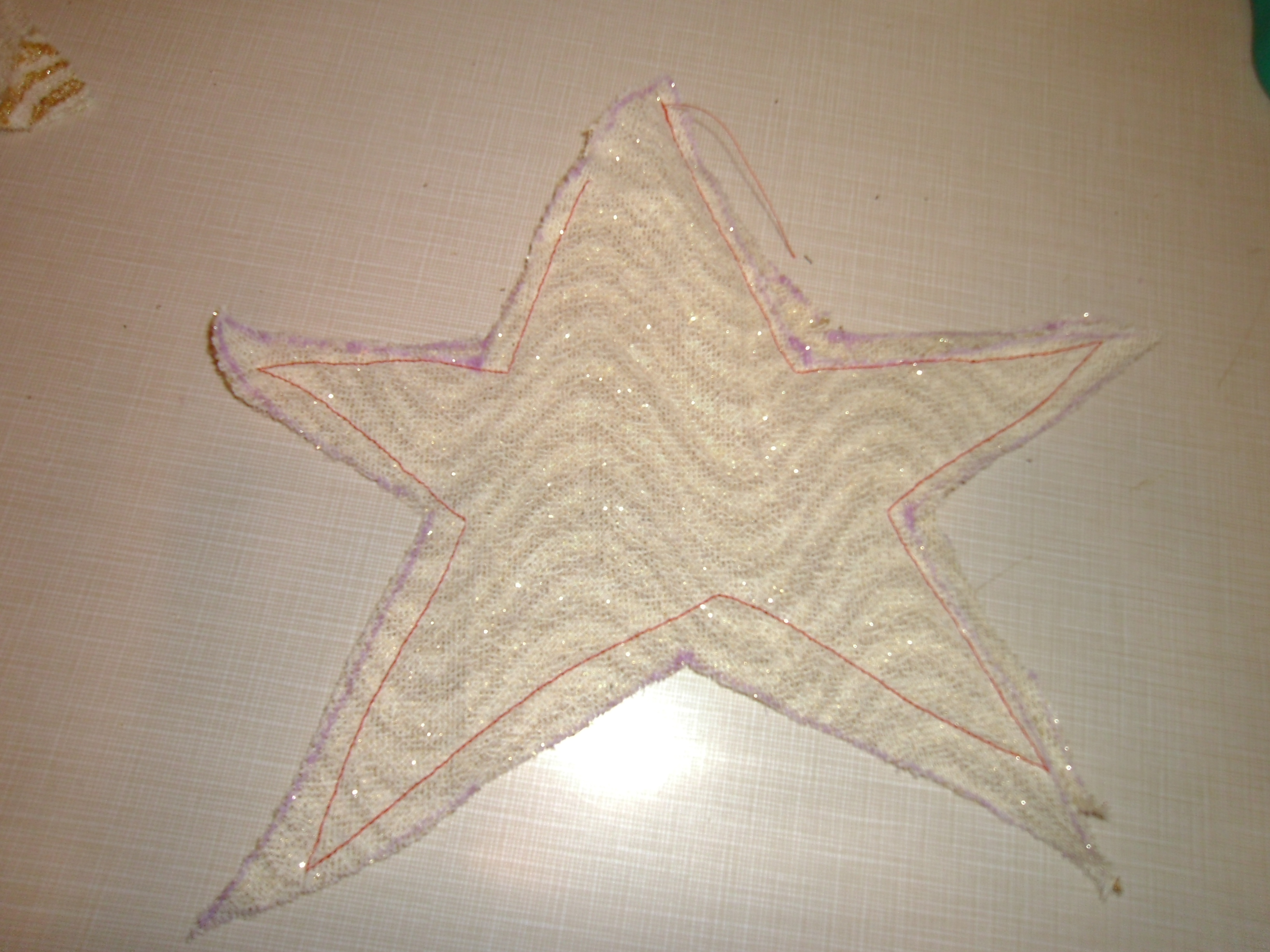 Day 148: A Star is Born 4