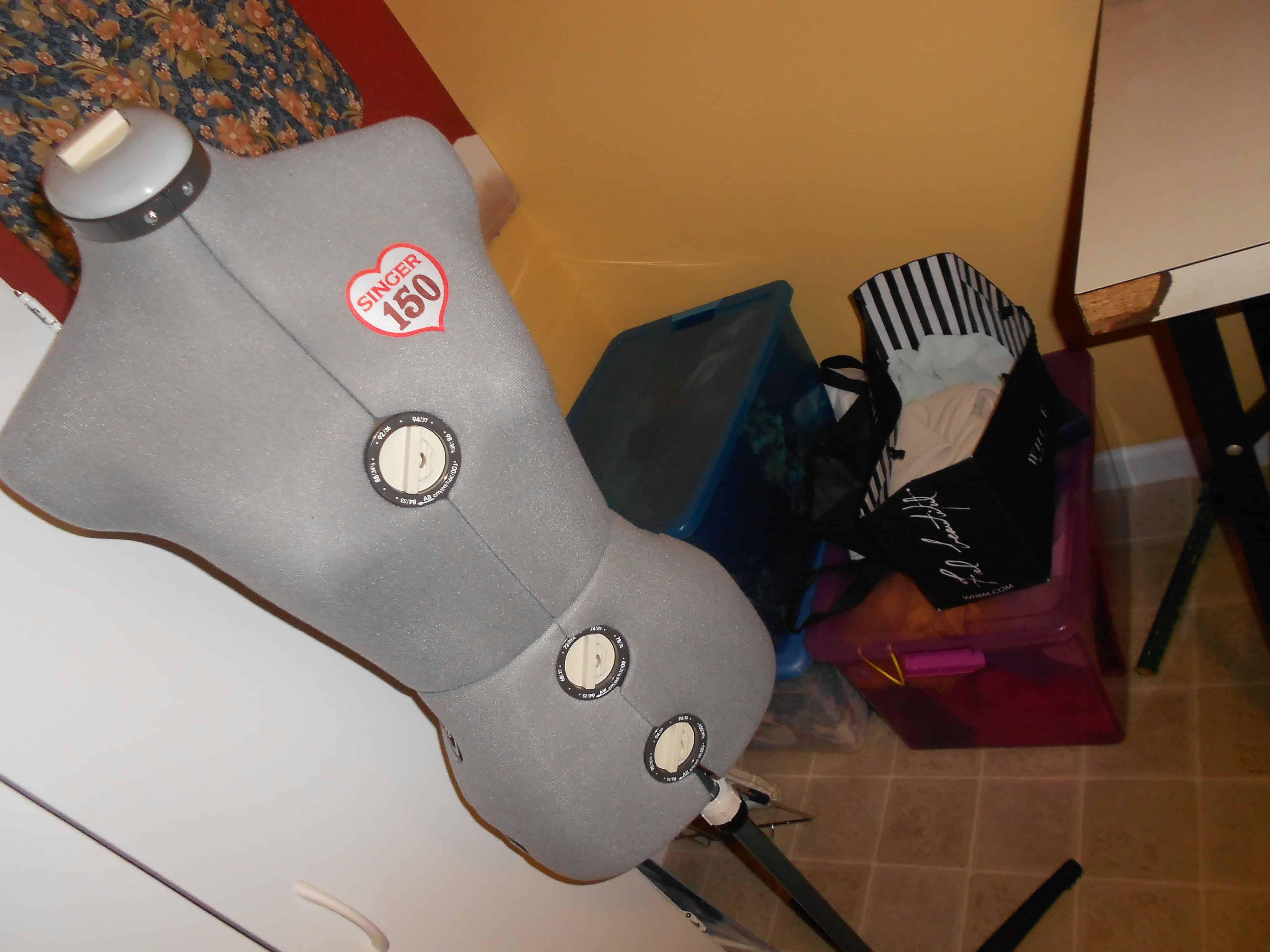 My dress form & bins 'o future refashions!  :)