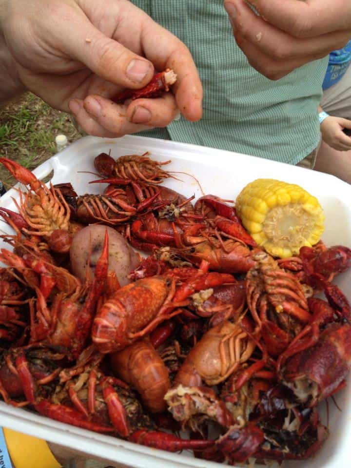 Mmmmmm! Those crawdads are good eatin'! :)