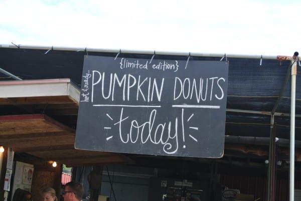 Pumpkin Donut Sign