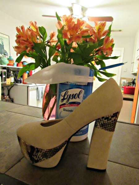 Still Life with Lysol