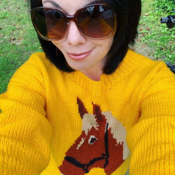 thrift store style refashionista horse sweater