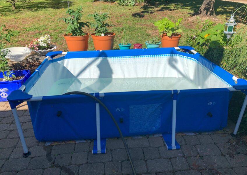 intex small rectangular frame pool