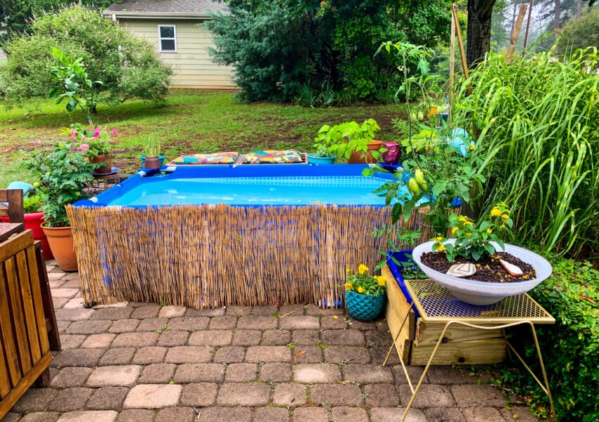 pool covered in reed fencing