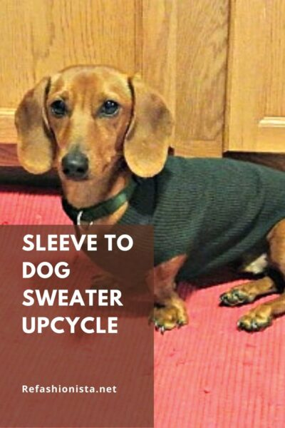 No-Sew DIY Dog Sweater from Old Sweater Pin 6