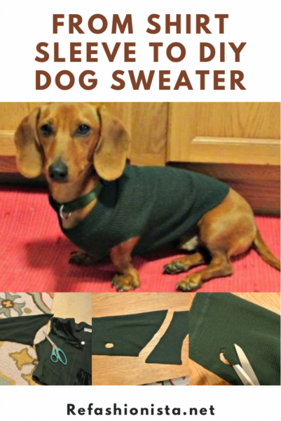 No-Sew DIY Dog Sweater from Old Sweater Pin 3