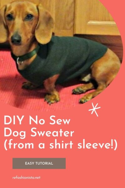 No-Sew DIY Dog Sweater from Old Sweater Pin 1