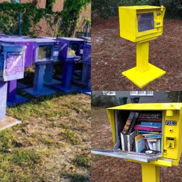 DIY Little Free Library (from an Old Newspaper Box!) pin 4