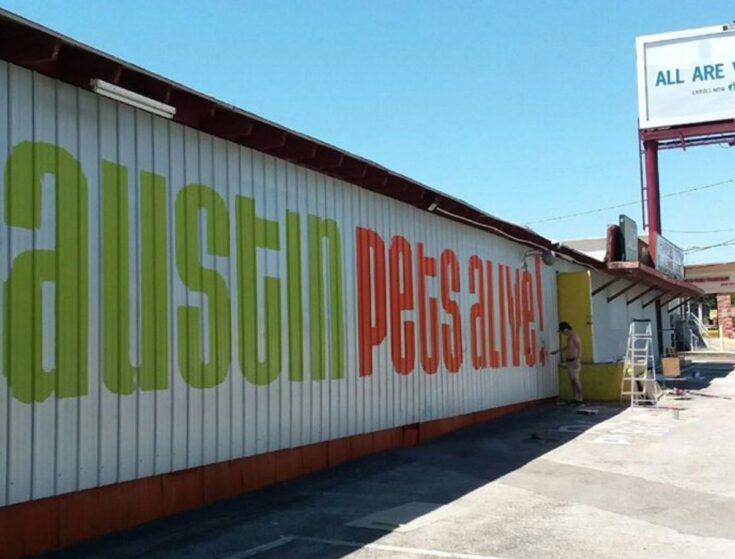 The Best Thrift Stores in Austin, TX! 4